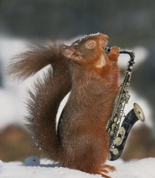 saksofonist-06
